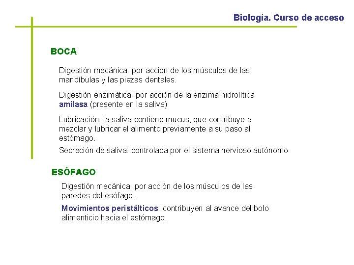Biología. Curso de acceso BOCA Digestión mecánica: por acción de los músculos de las