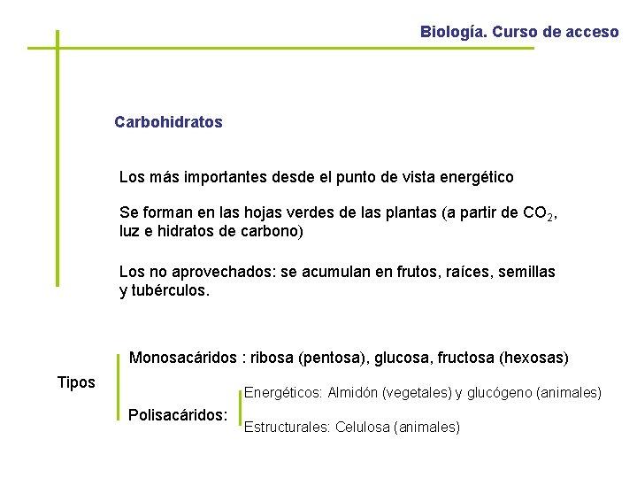 Biología. Curso de acceso Carbohidratos Los más importantes desde el punto de vista energético