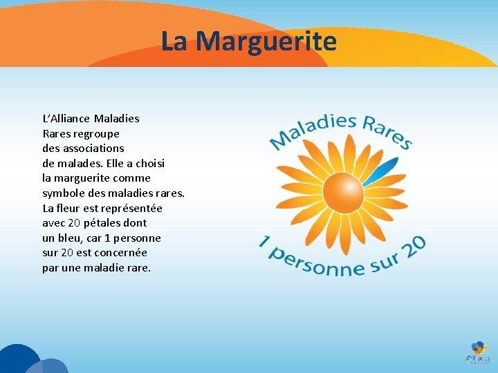 La Marguerite L'Alliance Maladies Rares regroupe des associations de malades. Elle a choisi la
