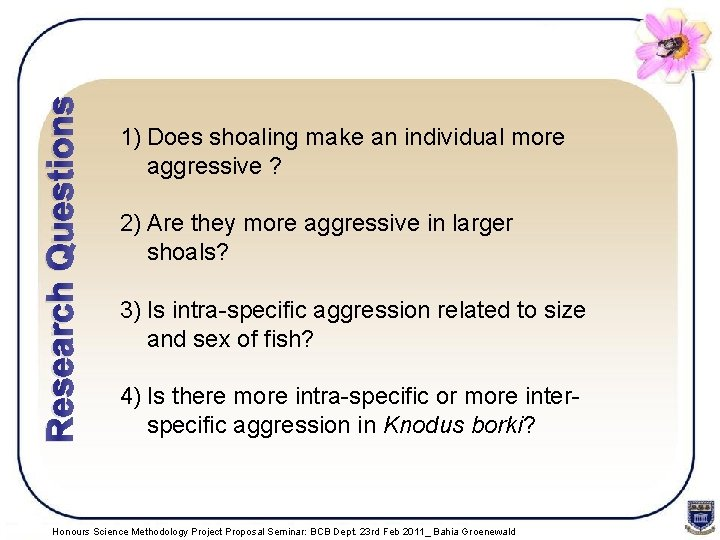 Research Questions 1) Does shoaling make an individual more aggressive ? 2) Are they