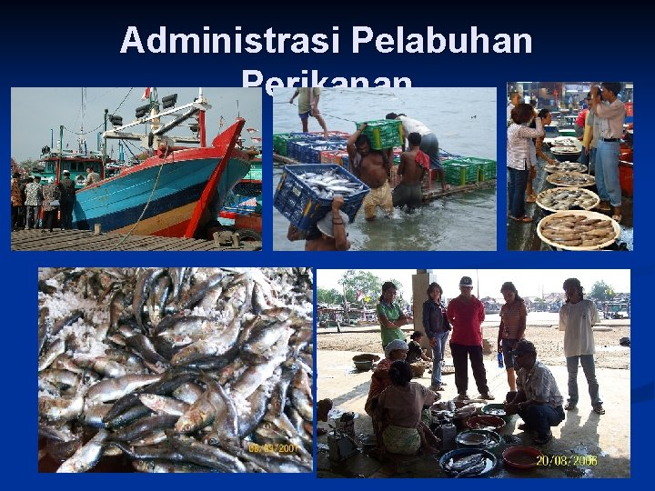 Administrasi Pelabuhan Perikanan