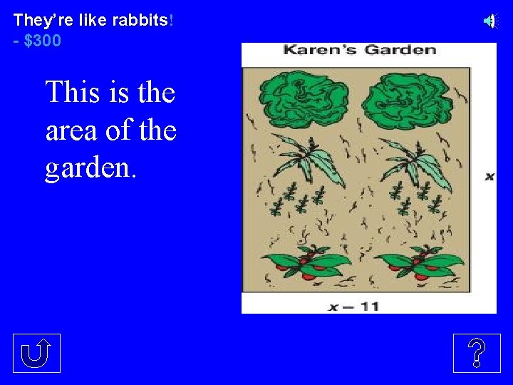 They're like rabbits! - $300 This is the area of the garden.