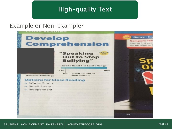 High-quality Text Example or Non-example? PAGE 45