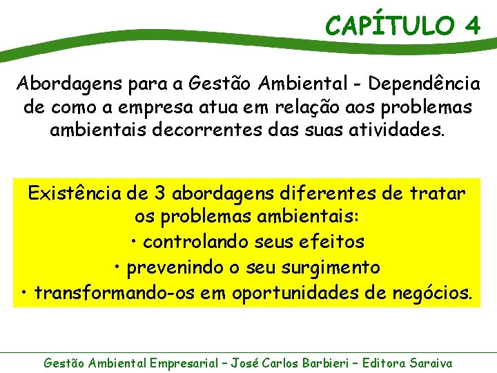 CAPÍTULO 4 Abordagens para a Gestão Ambiental - Dependência de como a empresa atua