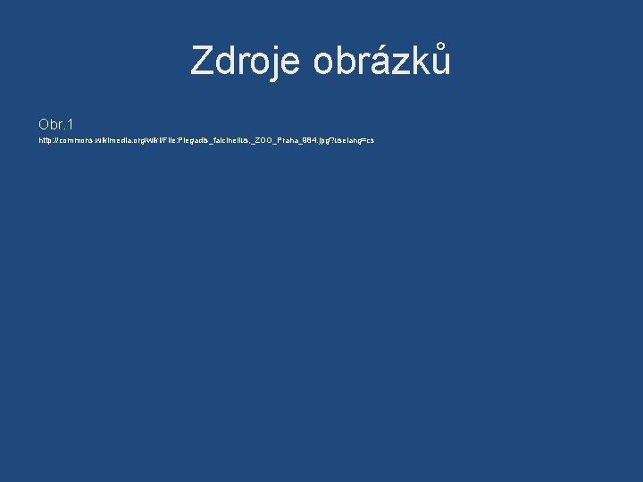 Zdroje obrázků Obr. 1 http: //commons. wikimedia. org/wiki/File: Plegadis_falcinellus, _ZOO_Praha_984. jpg? uselang=cs
