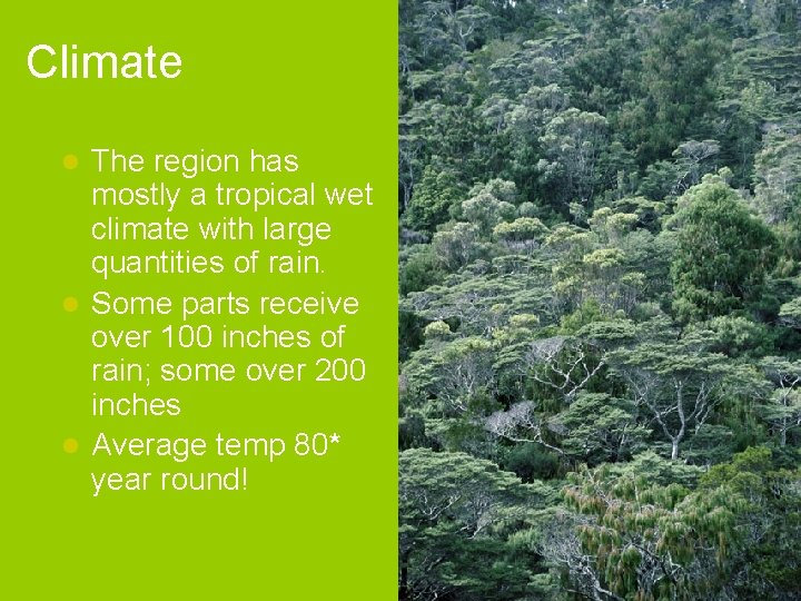 Climate The region has mostly a tropical wet climate with large quantities of rain.