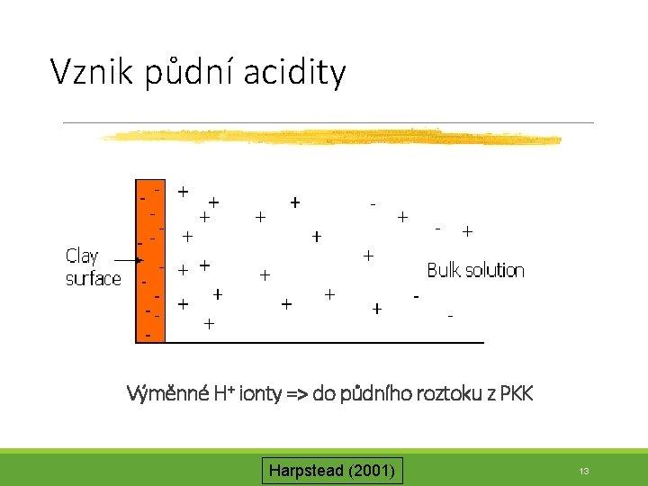Vznik půdní acidity Výměnné H+ ionty => do půdního roztoku z PKK Harpstead (2001)