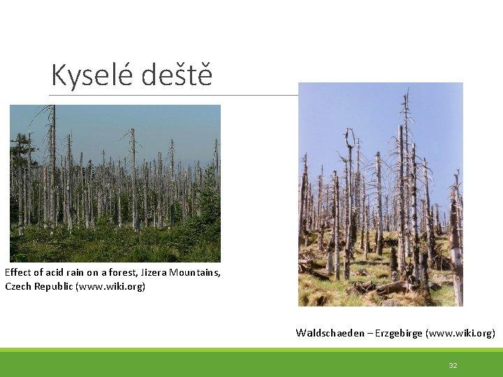 Kyselé deště Effect of acid rain on a forest, Jizera Mountains, Czech Republic (www.