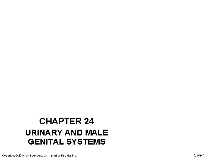 CHAPTER 24 URINARY AND MALE GENITAL SYSTEMS Copyright © 2014 by Saunders, an imprint