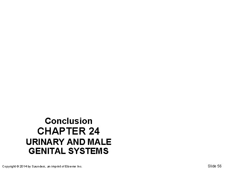 Conclusion CHAPTER 24 URINARY AND MALE GENITAL SYSTEMS Copyright © 2014 by Saunders, an