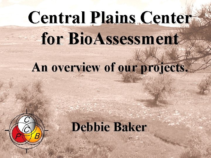 Central Plains Center for Bio. Assessment An overview of our projects. Debbie Baker