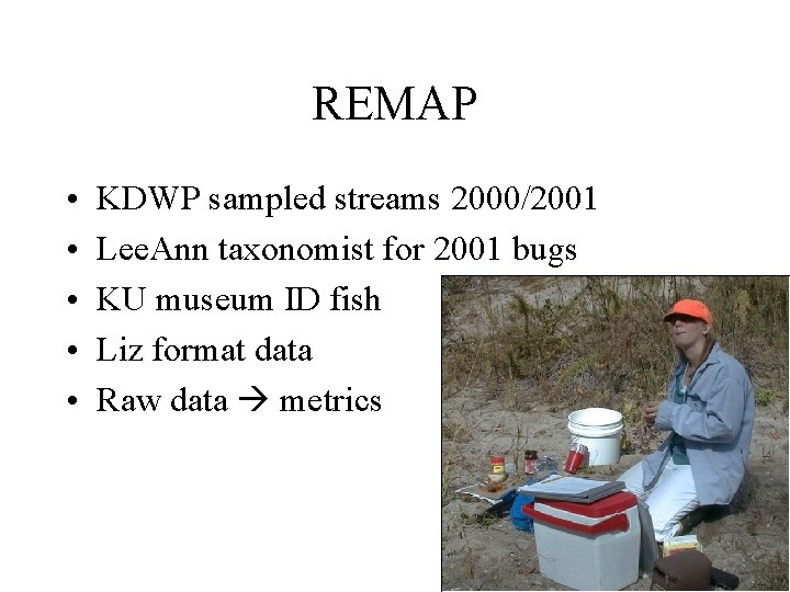REMAP • • • KDWP sampled streams 2000/2001 Lee. Ann taxonomist for 2001 bugs