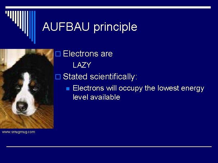 AUFBAU principle o Electrons are LAZY o Stated scientifically: n www. smugmug. com Electrons