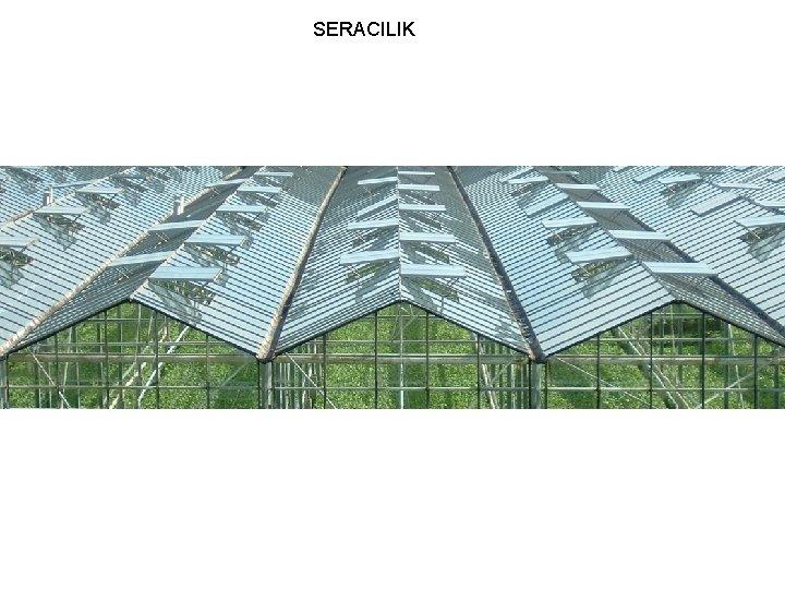 SERACILIK