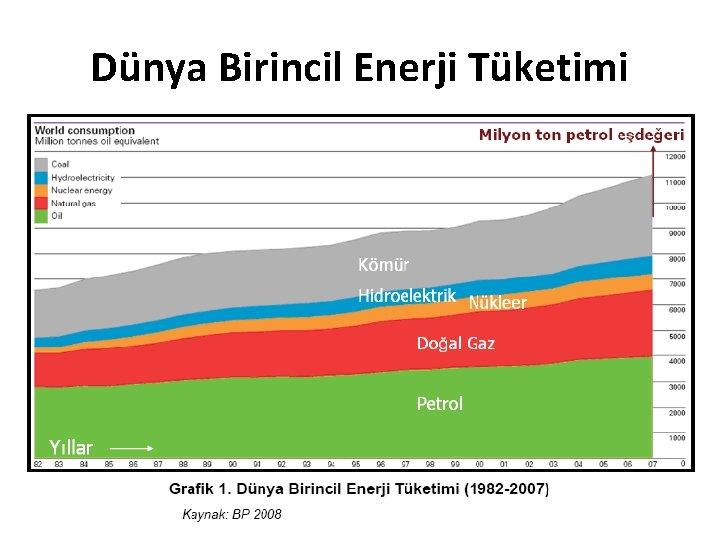 Dünya Birincil Enerji Tüketimi