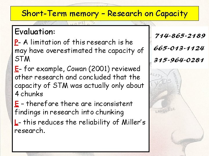 Short-Term memory – Research on Capacity Evaluation: P- A limitation of this research is