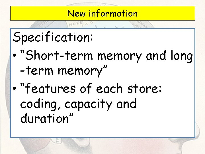 """New information Specification: • """"Short-term memory and long -term memory"""" • """"features of each"""