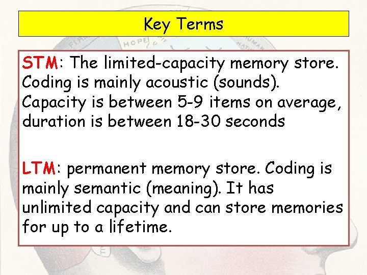 Key Terms STM: The limited-capacity memory store. Coding is mainly acoustic (sounds). Capacity is