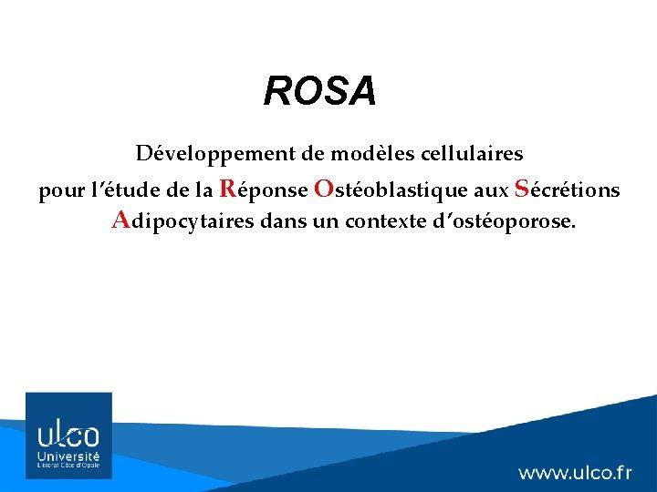 ROSA Développement de modèles cellulaires pour l'étude de la Réponse Ostéoblastique aux Sécrétions