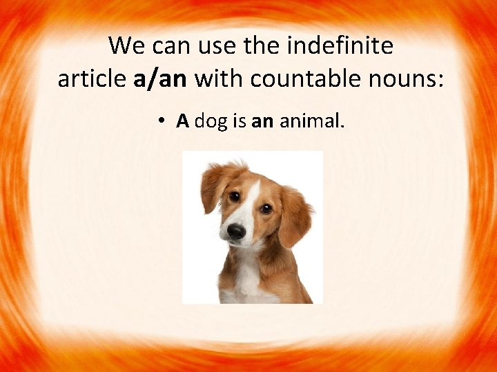 We can use the indefinite article a/an with countable nouns: • A dog is
