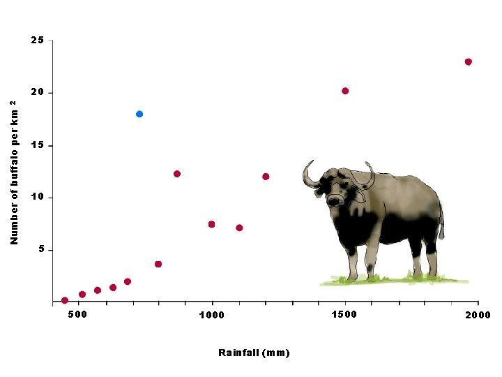 25 Number of buffalo per km 2 20 15 10 5 500 1000 Rainfall