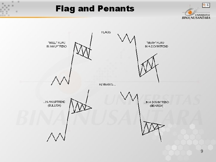 Flag and Penants 9