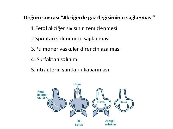 """Doğum sonrası """"Akciğerde gaz değişiminin sağlanması"""" 1. Fetal akciğer sıvısının temizlenmesi 2. Spontan solunumun"""