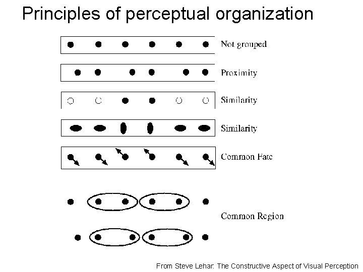 Principles of perceptual organization From Steve Lehar: The Constructive Aspect of Visual Perception