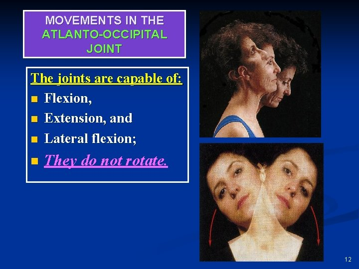MOVEMENTS IN THE ATLANTO-OCCIPITAL JOINT The joints are capable of: n Flexion, n Extension,