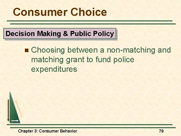 Consumer Choice Decision Making & Public Policy n Choosing between a non-matching and matching