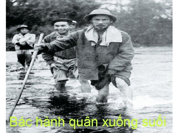 Bác hành quân xuống suối