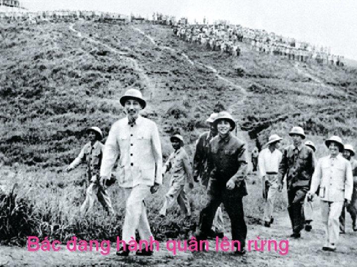 www. HNGHIA. Info Bác đang hành quân lên rừng