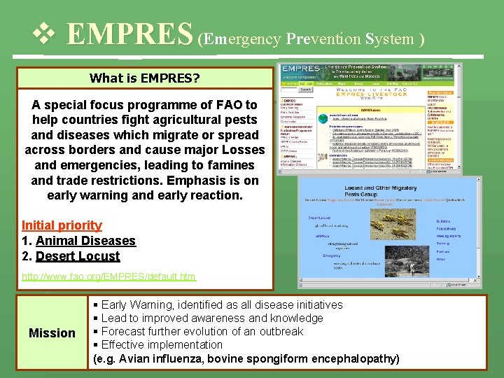 v EMPRES (Emergency Prevention System ) What is EMPRES? A special focus programme of