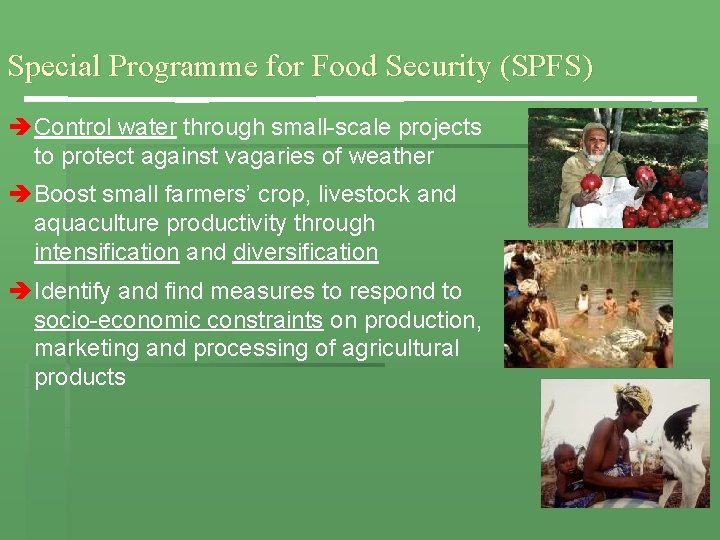 Special Programme for Food Security (SPFS) è Control water through small-scale projects to protect