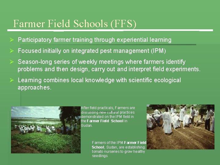 Farmer Field Schools (FFS) Ø Participatory farmer training through experiential learning Ø Focused initially