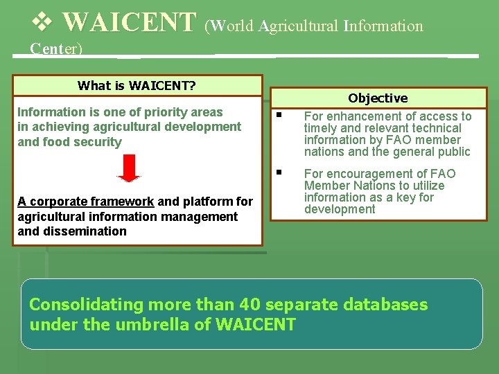 v WAICENT (World Agricultural Information Center) What is WAICENT? Information is one of priority
