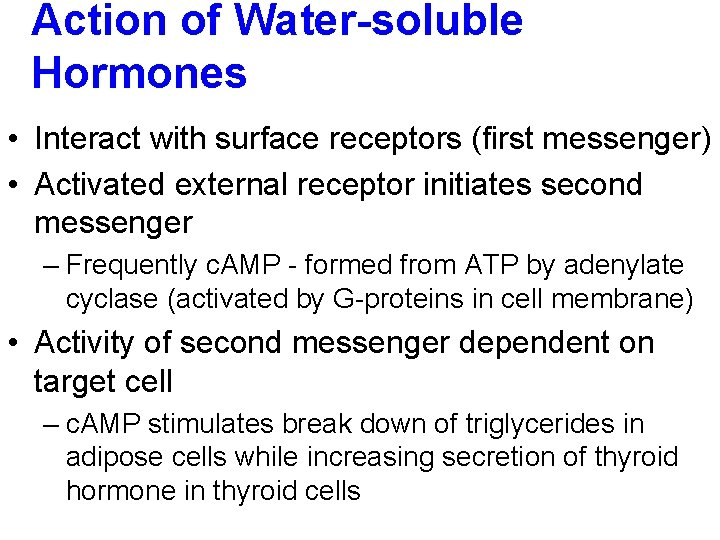 Action of Water-soluble Hormones • Interact with surface receptors (first messenger) • Activated external