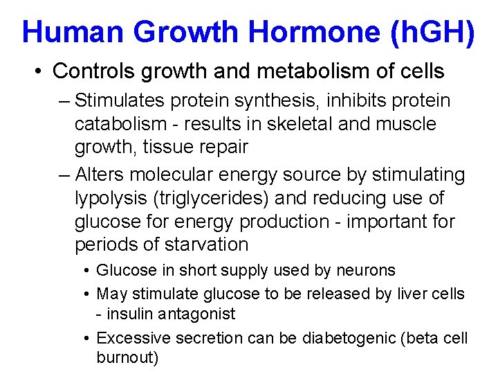 Human Growth Hormone (h. GH) • Controls growth and metabolism of cells – Stimulates
