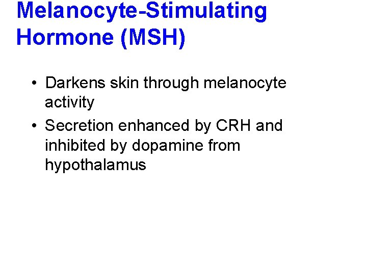 Melanocyte-Stimulating Hormone (MSH) • Darkens skin through melanocyte activity • Secretion enhanced by CRH