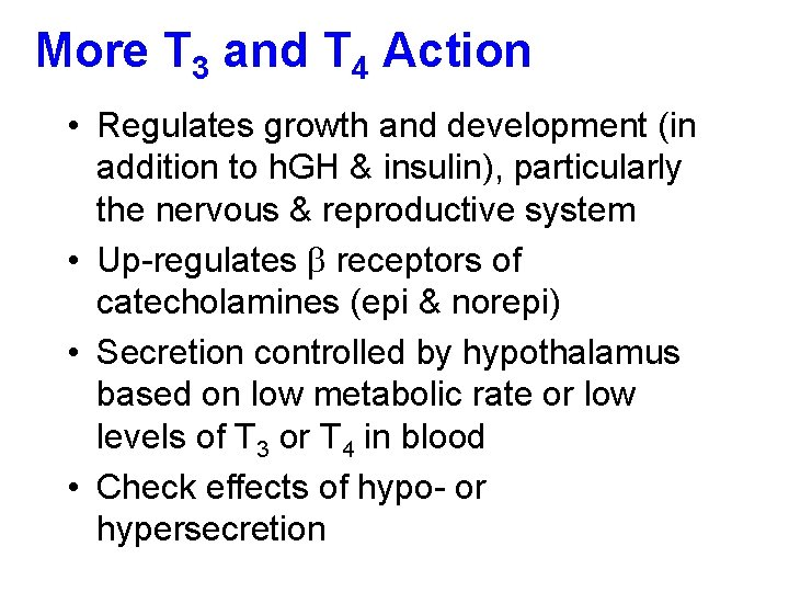 More T 3 and T 4 Action • Regulates growth and development (in addition