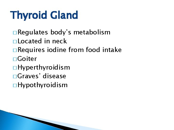 Thyroid Gland � Regulates body's metabolism � Located in neck � Requires iodine from