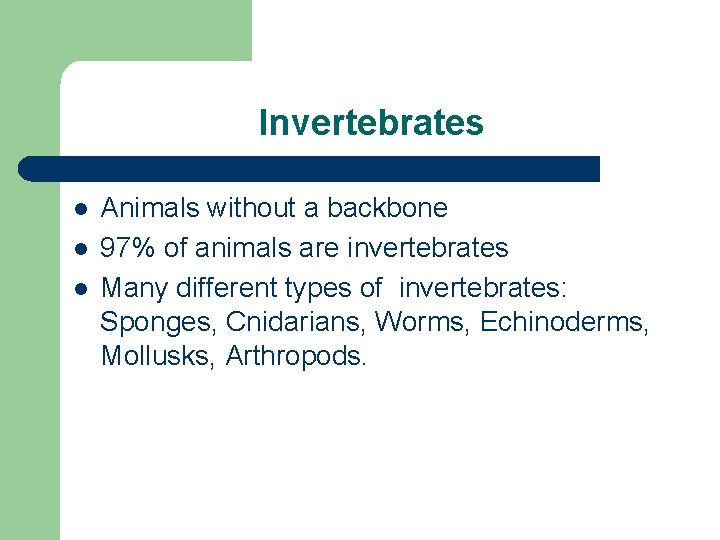 Invertebrates l l l Animals without a backbone 97% of animals are invertebrates Many