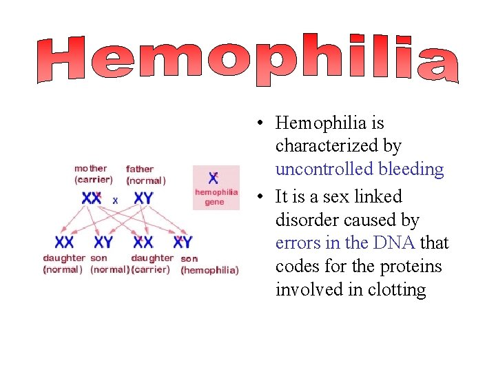 • Hemophilia is characterized by uncontrolled bleeding • It is a sex linked