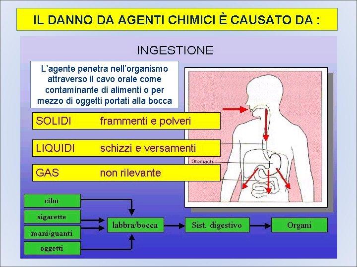 IL DANNO DA AGENTI CHIMICI È CAUSATO DA : L'agente penetra nell'organismo attraverso il