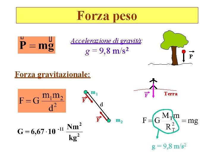Forza peso Accelerazione di gravità: g = 9, 8 m/s 2 P Forza gravitazionale:
