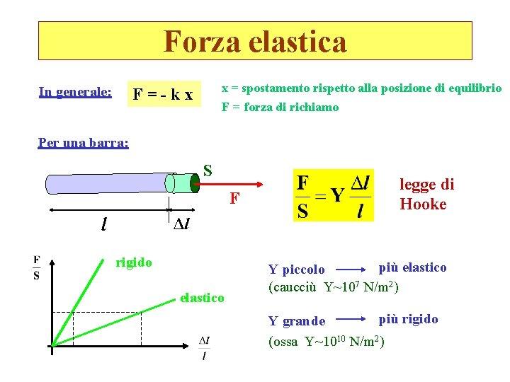 Forza elastica In generale: x = spostamento rispetto alla posizione di equilibrio F=-kx F