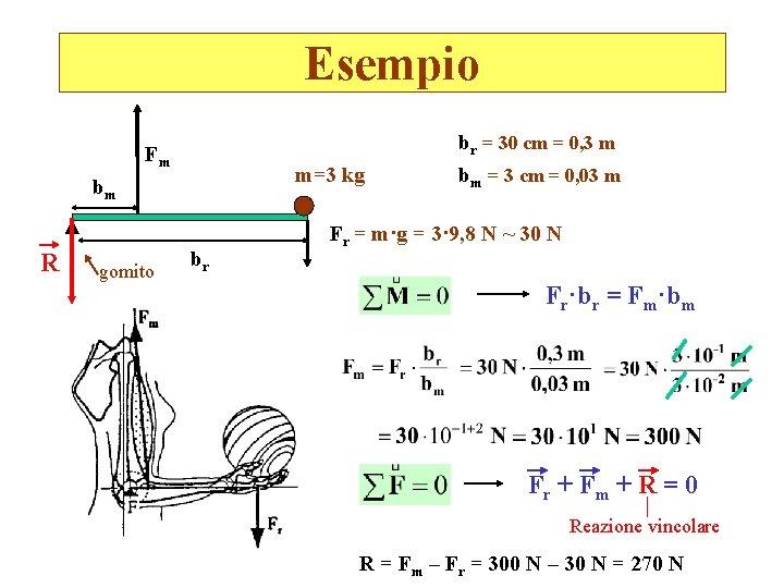Esempio br = 30 cm = 0, 3 m Fm m=3 kg bm R