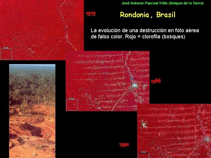José Antonio Pascual Trillo (Amigos de la Tierra) 1975 Rondonia , Brasil La evolución