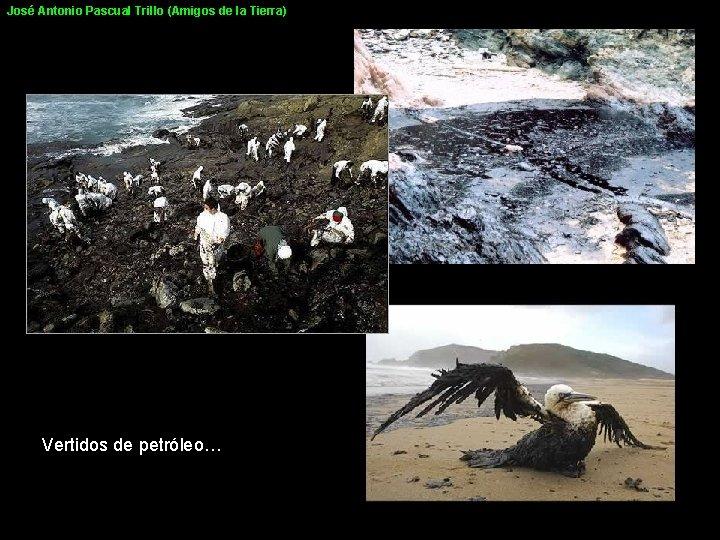 José Antonio Pascual Trillo (Amigos de la Tierra) Vertidos de petróleo…