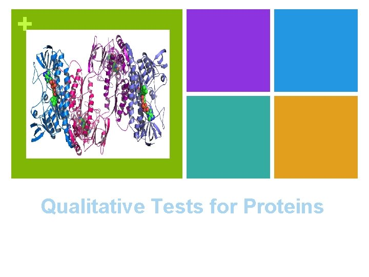 + Qualitative Tests for Proteins